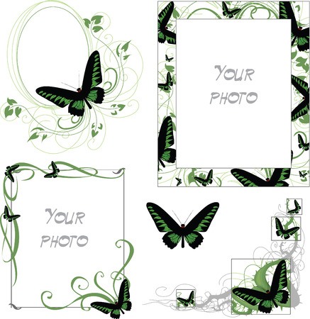 set of frames with green and black butterfly Vector