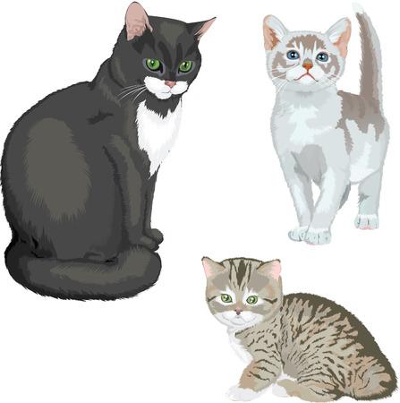 Black cat and two kittens Иллюстрация