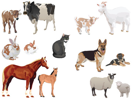 clipart set of domestic animals with cubs Vettoriali