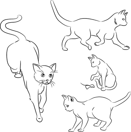 line drawing: Set of minimalistic ink sketches of cats in motion
