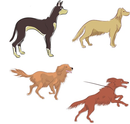 Set of colored ink sketches of dogs in motion Vector
