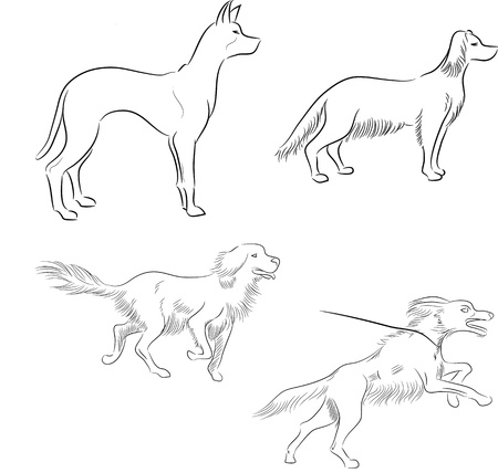 Set of minimalistic ink sketches of dogs in motion