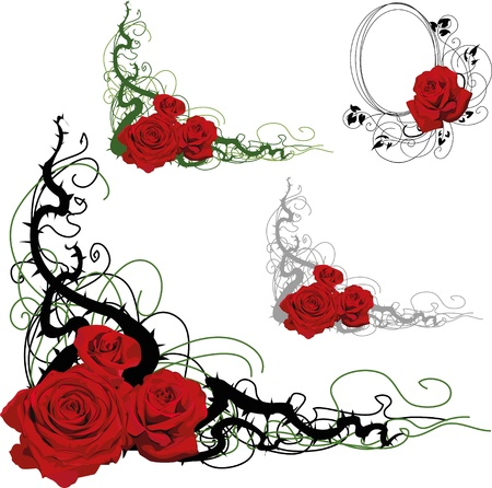 green swirl: Set of floral design elements with roses