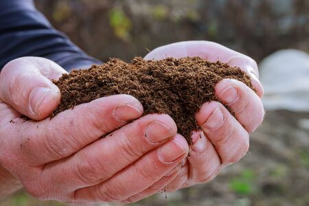 A handful of fertile land in the hands of the farmer. Sowing seeds.