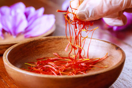 The girl in rubber gloves takes the saffron from a wooden plate. Fresh saffron stamens.