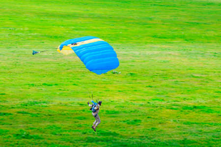 A parachutist with a yellow-blue parachute canopy lands on the grass. Skydiving. Parachute jumping.