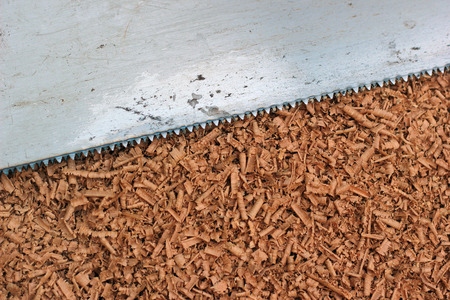 saw blade: Wood shavings and saw blade texture background Stock Photo