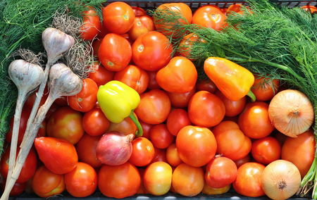 close up of onions in a basket: Box with vegetables: tomato, pepper, onions, garlic, fennel. Vegetables close up.
