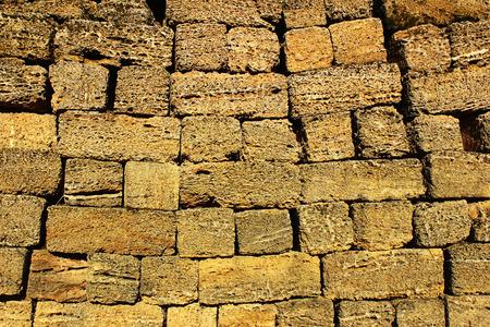 porous brick: Shell limestone blocks