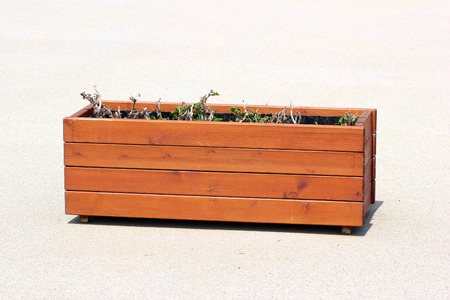 Wooden planter box with dried withered plants Stock Photo