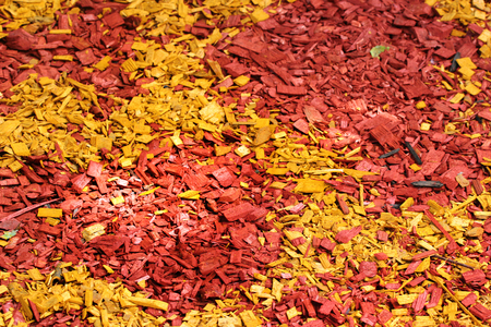 Colorful mulch around a tree