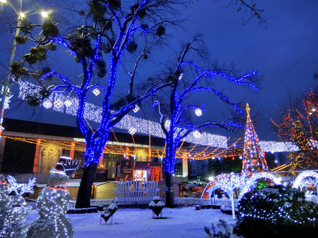 Chisinau, Moldova - December 18, 2017: Christmas and New Year illumination and decorations on avenue Stefan cel Mare, central street of Chisinau.