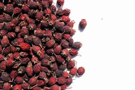 Dried berries of cinnamon rose (Rosa majalis)