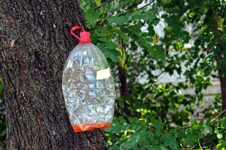Plastic bottle hanging on a tree Banco de Imagens