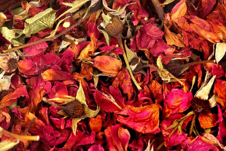 Dried rose flowers, petals and leaves Фото со стока