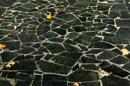 Yellow leaves on black tiles in a park