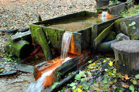 Water spring in autumn forest