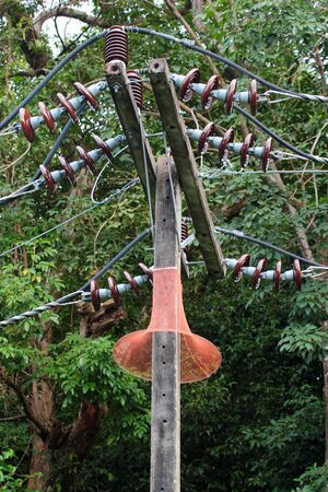 Anti-monkey net on an electrical pole in Phuket, Thailand. Monkeys and other wild animals often cause power outages.
