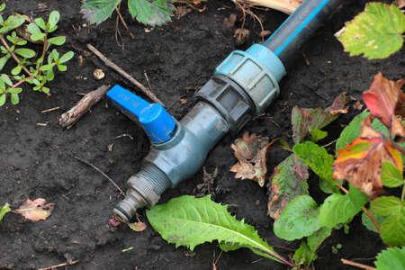 Plastic hose and valve of sprinkler system in a garden