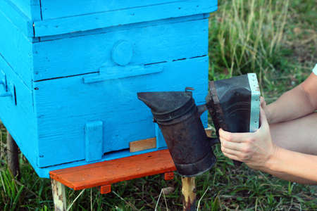 Old bee smoker, a device used in beekeeping to calm honey bees