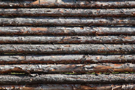 Old rough wooden logs. fence texture