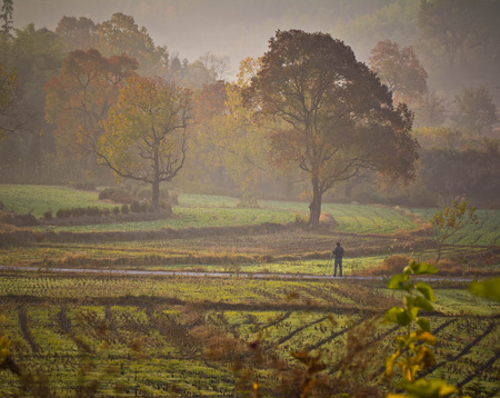 reclamation: Anhui Ta Chuan Autumn scenery Stock Photo