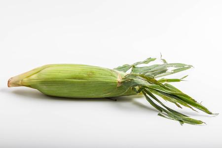 maize cultivation: Corn Stock Photo