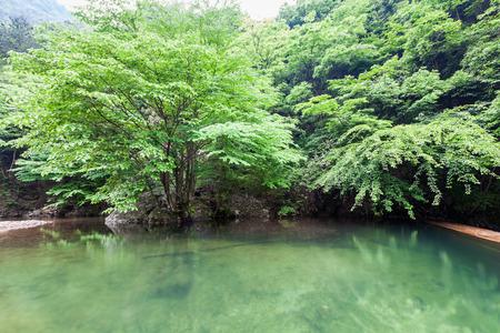 natural force: Zhejiang Qingliangfeng Nature Stock Photo