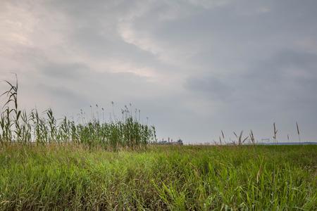 ance: Canne Wuxi Taihu Lake