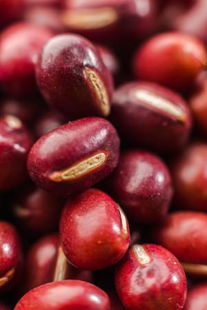 Red bean Standard-Bild - 101476055