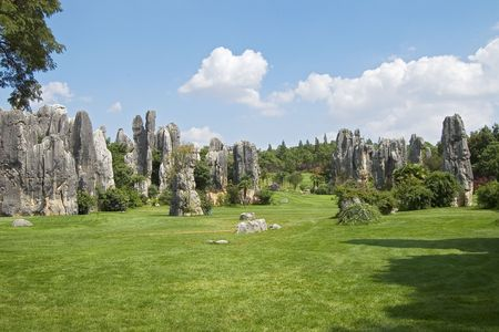 phenomenon: The Stone Forest is a natural phenomenon in Kunming China