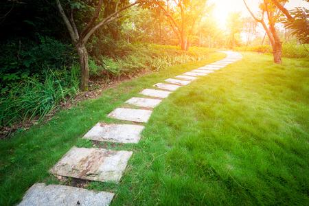 緑豊かな庭園の階段道