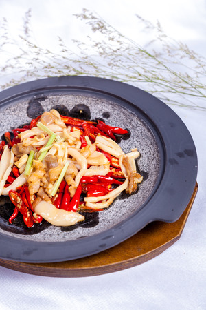China dish photo