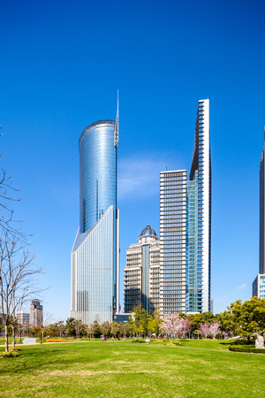 city and grass with blue sky, the modern building of the lujiazui financial center in shanghai china photo