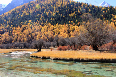 sunlit: Natural scenery at Yading, Daocheng