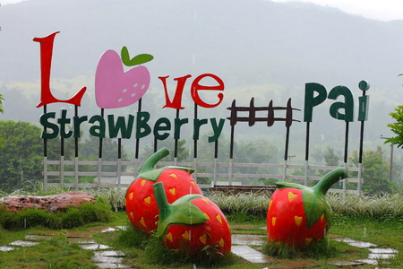 statuary garden: CHIANGMAI, THAILAND - SEPTEMBER 27: Heavy rain pouring on Love Strawberry, the attraction in the small town of Pai, September 27, 2013, Chiangmai, Thailand