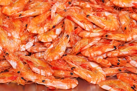 a very delicious food - dried shrimp Stock Photo - 18483233