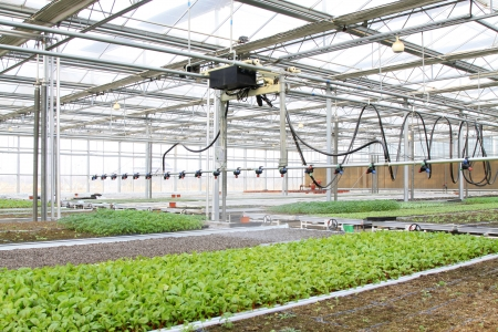 smart spraying equipment in the leting modern agricultural garden Stok Fotoğraf
