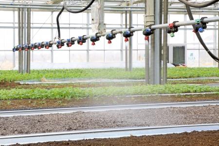 LETING 郡河北省 - 2 月 24 日: スマート Leting 現代農業で庭に 2013 年 2 月 24 日、Leting 郡、河北省、中国の噴霧装置