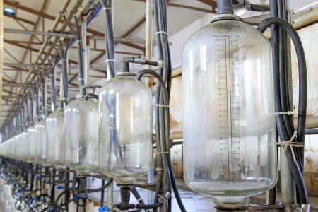 glass milk storage tank in a milking workshop, luannan county, china Stock Photo - 20874927