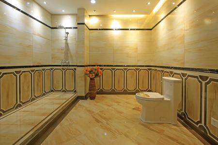 implement: ceramic toilet sit implement, closeup of photo