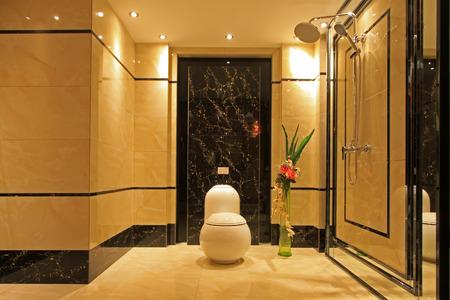 implement: WC in ceramica sedersi attuare, primo piano di foto