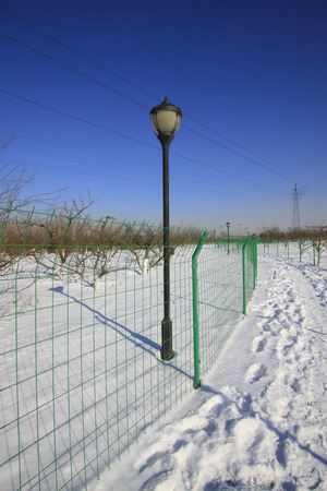 wire mess: Metal fences and street lamps during the snow