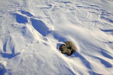 outdoor lighting: rock in the snow, closeup of photo