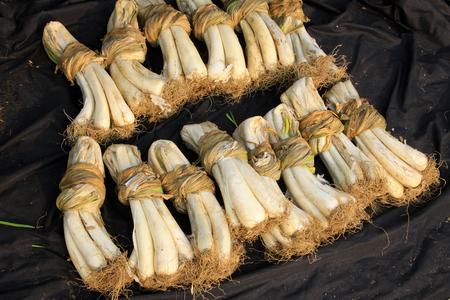 shrinking: dry shallot in a market Stock Photo