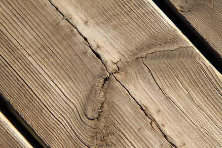 damp: damp wood splice together, closeup of photo Stock Photo