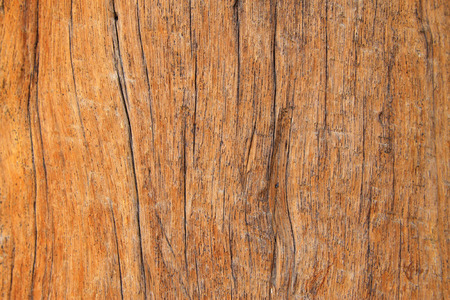 cherish: Gold-rimmed nanmu texture, closeup of photo Stock Photo