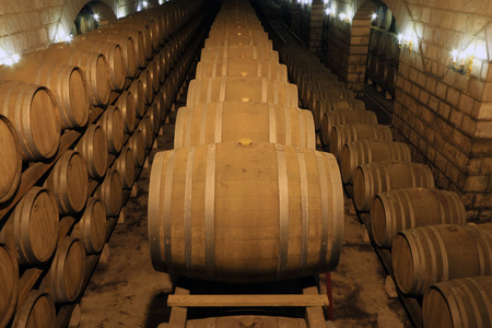 fermenting: French Oak Wine Barrel in the wine cellar