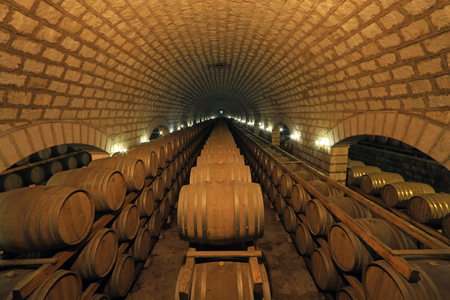 French Oak Wine Barrel in the wine cellar