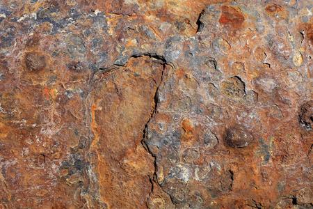 Mottled rust, closeup of photo Stock Photo